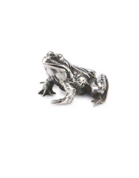 silver-frog